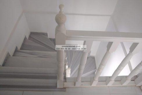 IMG-20210125-WA0044 (Copy)